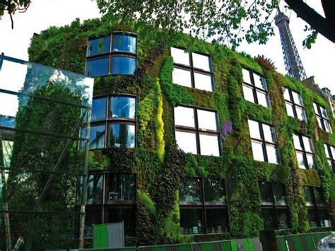 Batijournal » Les façades végétales : mieux vaut prévenir ...
