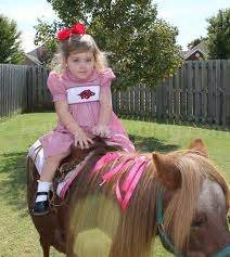 Bay Area Party Pony Petting Zoo Rentals! | Fun Factory Parties