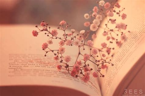 beautiful and cute! | Book flowers, Facebook cover photos ...