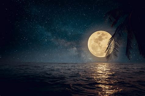 Beautiful Beach At Night Stock Photo   Download Image Now ...
