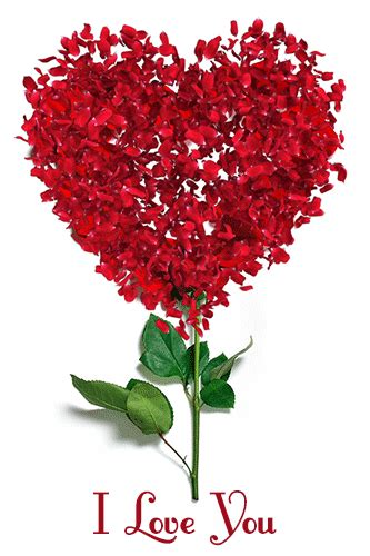 Beautiful Cute I Love You Gifs and SMS Download Free ...