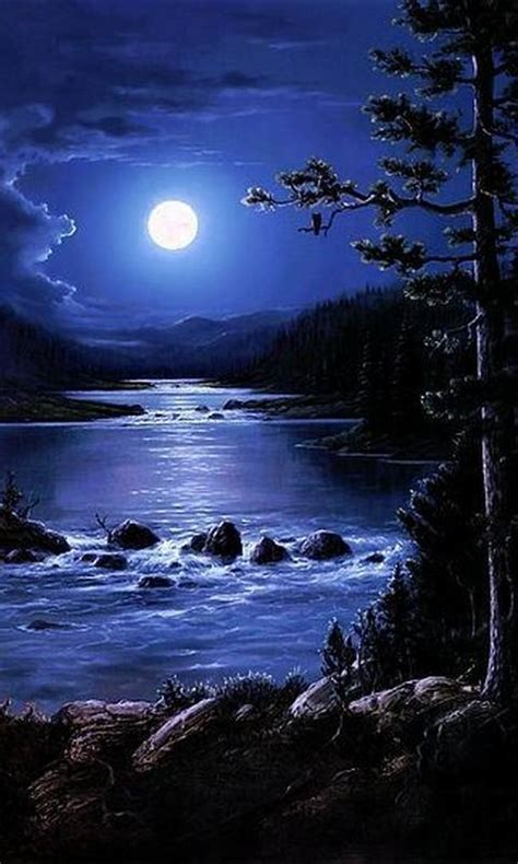 Beautiful Night wallpaper by __Sonia__   ab   Free on ZEDGE