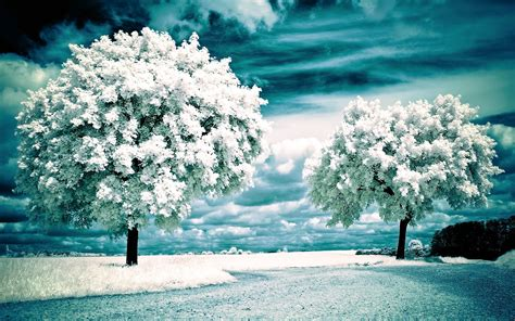 Beautiful Scenic HD Wallpapers 2015  High Quality    All ...