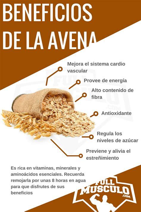 Beneficios de avena   MundoNatura   Salud Integral