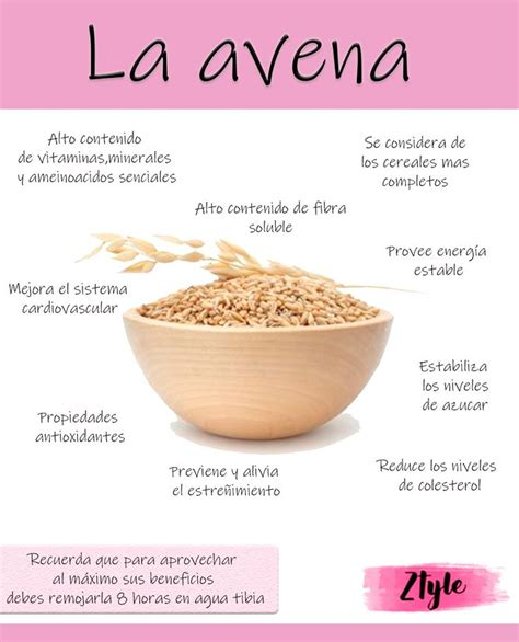Beneficios de la avena. El alimento ideal para tu desayuno ...