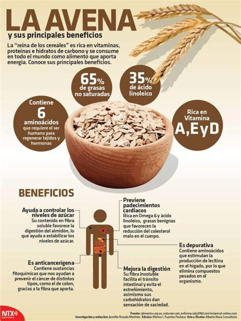 Beneficios de la avena [Infografía]   INSteractúa