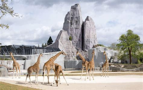 Bernard Tschumi s Paris zoo   Icon Magazine