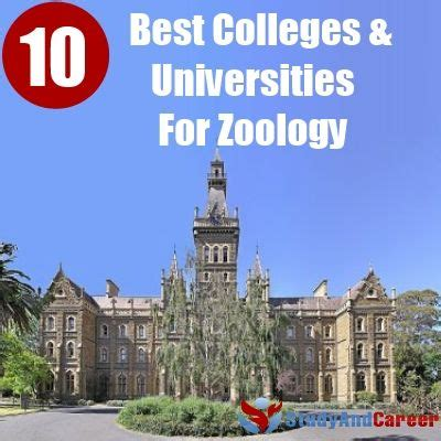 Best 10 Colleges And Universities For Zoology   Study And ...