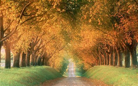Best Desktop HD Wallpaper   Autumn Wallpapers