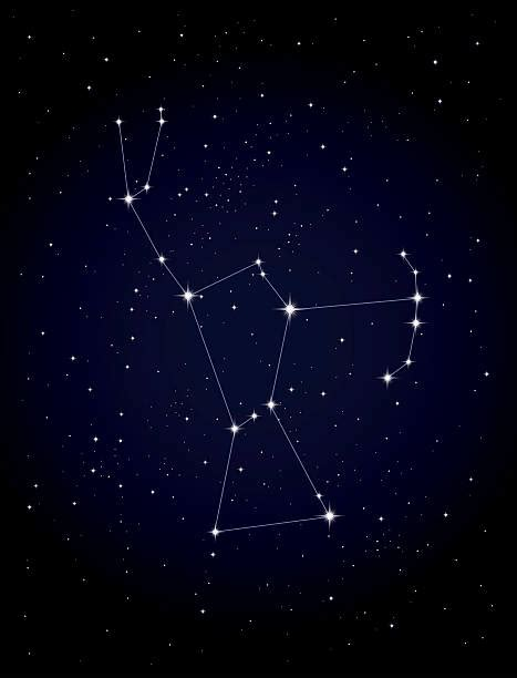 Best Orion Constellation Illustrations, Royalty Free ...