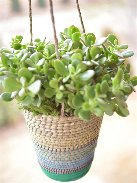 Best Outdoor Hanging Plants for Spring | HGTV