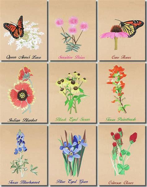 BFC0939 Texas Wildflowers I