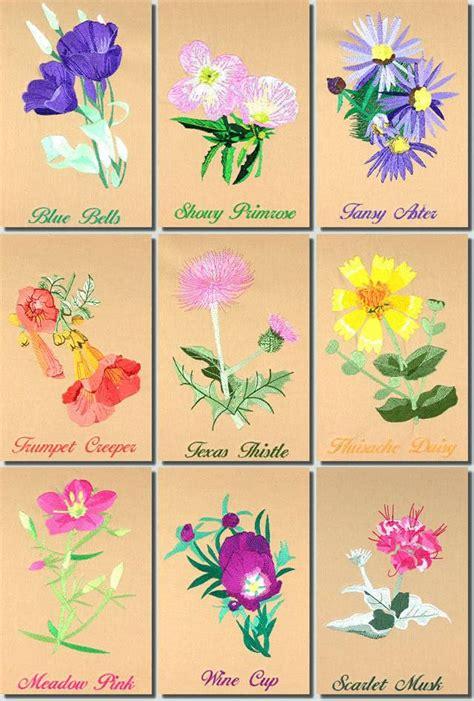 BFC0944 Texas Wildflowers II