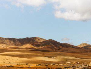 Biludlejning Fuerteventura Lufthavn   Billig biludlejning ...