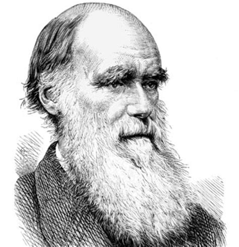 Biography of Charles Darwin | The theory of Evolution ...