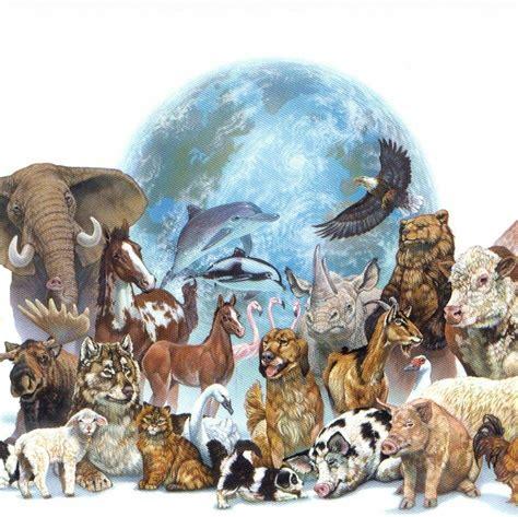 Biología Animal: Qué es, carrera y mucho más sobre ella
