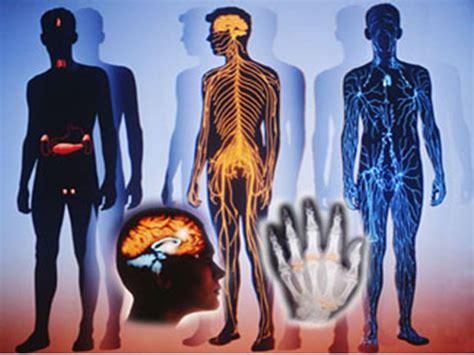 BIOLOGIA: BIOLOGIA HUMANA