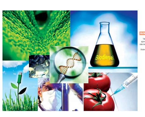 BIOLOGÍA COBACH 13, QUICHANES: BIOTECNOLOGÍA