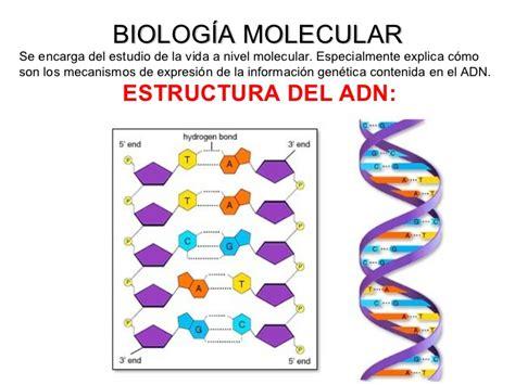 Biología molecular ing. genética biotecnología reprod asistida