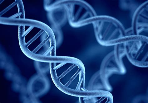 biologia molecular – Analitek