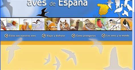 Biología y Geología: Guía de aves SEO Birdlife