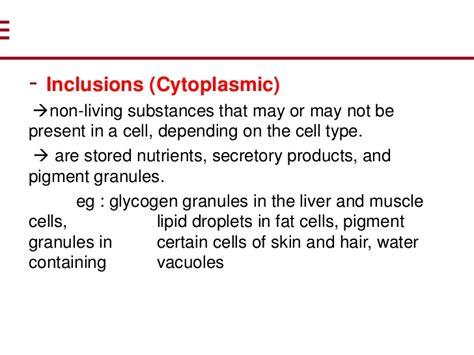 Biology, cytoplasm
