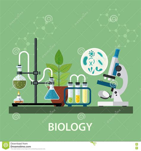 Biology Laboratory Workspace Stock Vector   Illustration ...