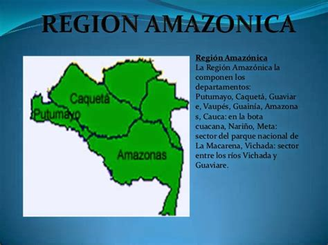 biolop09: REGION AMAZONIA