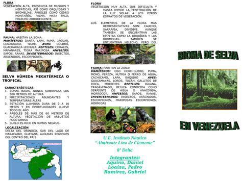 Bioma de selva en Venezuela