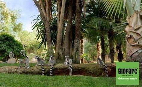 Bioparc, el parque animal de Fuengirola, ofrece entradas ...