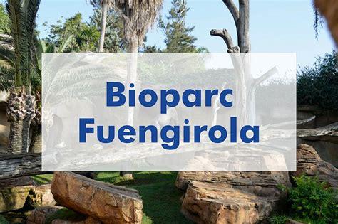 Bioparc Fuengirola: Cómo llegar, horarios, precios y ...
