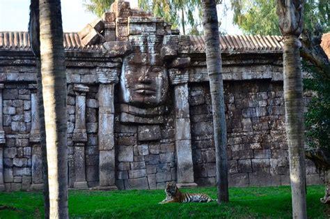 Bioparc Fuengirola  Málaga  recibe a una tigresa de ...