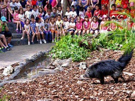 Bioparc Fuengirola   Parques Zoológicos