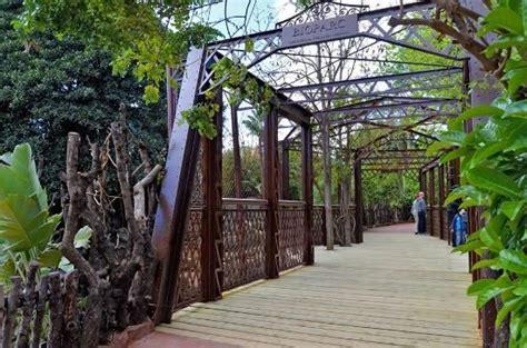 Bioparc Fuengirola  Spain : Top Tips Before You Go ...