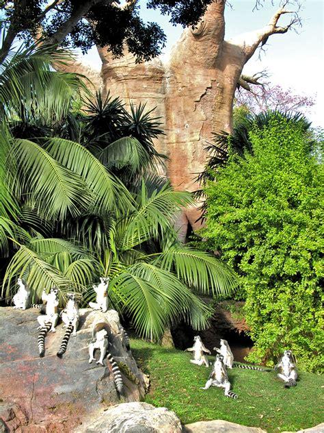 Bioparc Fuengirola Zoo