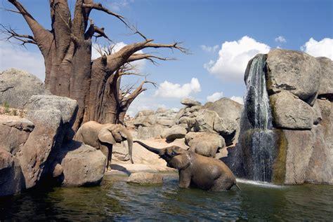 Bioparc   turismo Xirivella   ViaMichelin