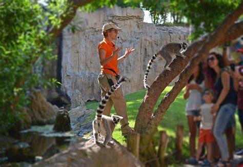 BIOPARC Valencia: actividades gratuitas y horario de verano