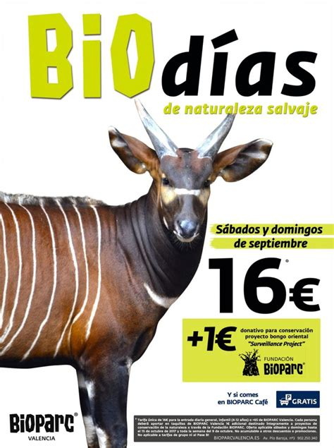 BIOPARC Valencia empieza septiembre con la promoción BIOdías
