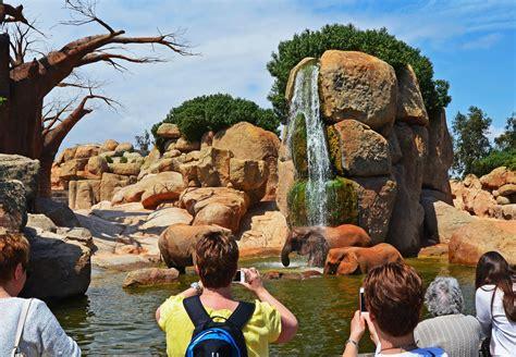 Bioparc Valencia entre el 10% de instituciones turísticas ...