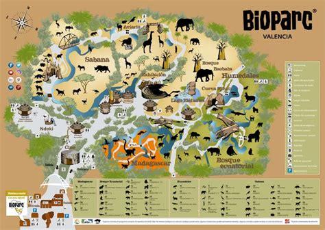 Bioparc Valencia: guía completa del parque zoológico ...