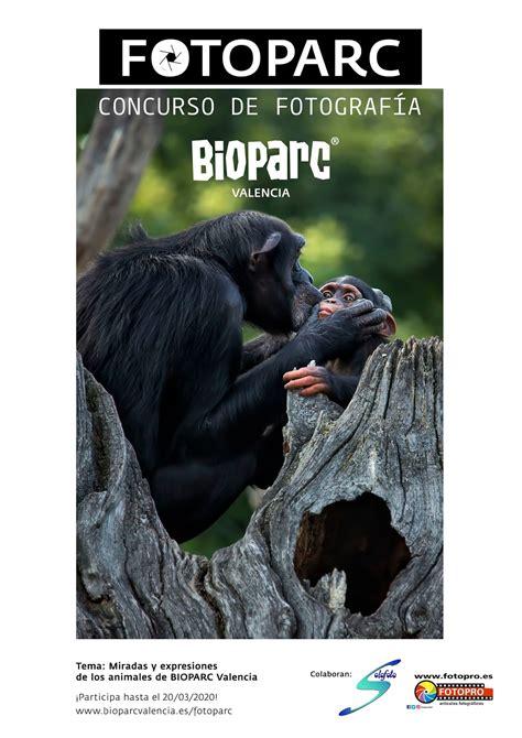 Bioparc Valencia lanza  Fotoparc  para concienciar sobre ...