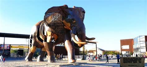 Bioparc   ZOO w Walencji   Co zobaczyć w Walencji | Zoo ...