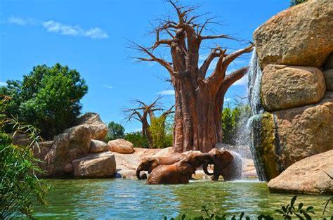 Biopark. Parque Conservacionista.   Parques, Hábitat ...