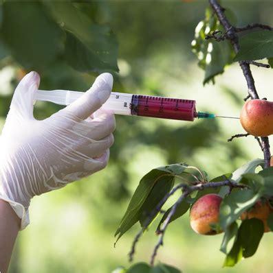 Biotecnología Ambiental | Instituto de Biotecnología