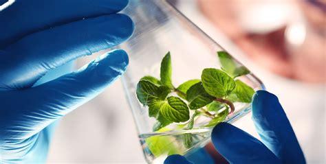 Biotecnología Ambiental on emaze