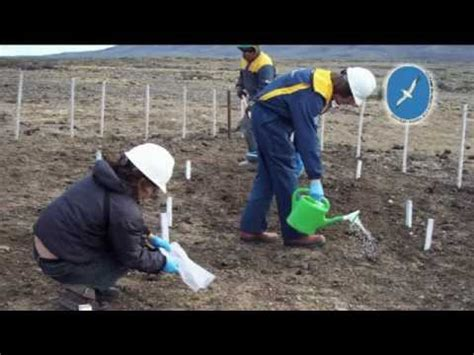 Biotecnologia ambiental   YouTube