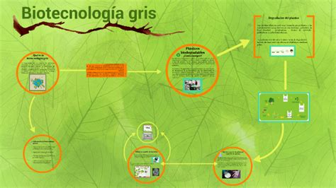 BIOTECNOLOGÍA GRIS!! by Micaela Quesada on Prezi