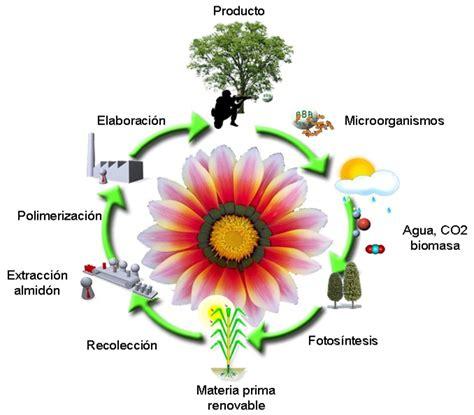 Biotecnologia y Tecnologia Ambiental: BIOTECNOLOGÍA AMBIENTAL