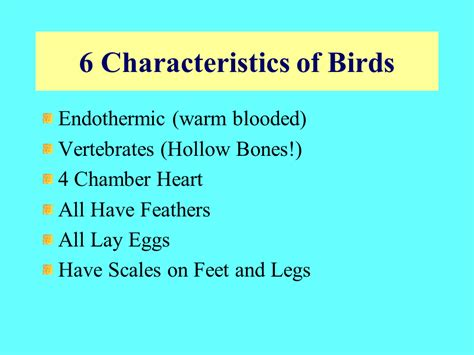 Bird Biology   Presentation Biology   SliderBase