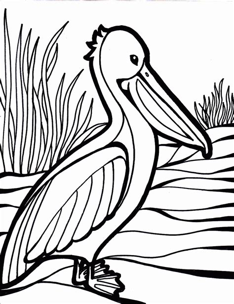 Bird Coloring Pages   Coloring Kids